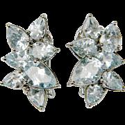 Stylish Aquamarine Earrings  (1016)