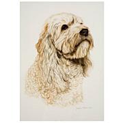 Jacquie Marie Vaux Original Watercolor Dog Portrait