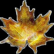 Charming Vintage Hroar Prydz Norway Big Sterling Enamel Fall Maple Leaf Brooch Pin
