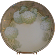 R.S. Germany Handpainted Hydrangea Plate