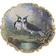 Limoges Charger/Wall Plate Handpainted With Lapwings From The Lewis Strauss and Sons Company