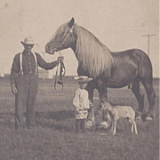 SOLD Photograph Grandpa and His Stallion and Grandson with Colt