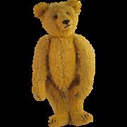 "Early 1900's   ~ ANTIQUE 10"" TEDDY BEAR ~   Light Brown Mohair"