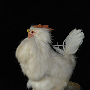SOLD Antique Chicken With Egg Laying Mechanism
