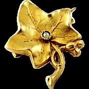 French antique art nouveau gold filled FIX ivy leaf brooch.