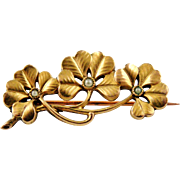 French antique art nouveau gold filled four leaf clover brooch