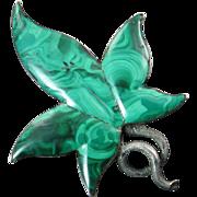 Victorian Scottish Pebble Malachite Leaf Brooch