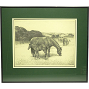 "Original Lithograph of Horses by C W Anderson Ltd/Ed Pencil Signed ""Mother's Boy"""