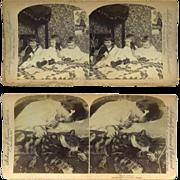 2 Stereoview Photos, 1890s Cute Children, Cherubic Child & Tabby Cat Sleeping