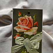 c1910s Sample Candy Box TOP Only, Catherine Klein Pink Rose, Pale Green Silk Bow #72
