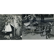 2 Stereoview Photos 1907,  Girl with Rabbits, Boys in Goat Cart
