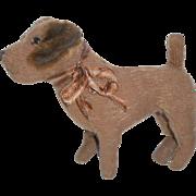 Well Loved Terrier Dog c1920