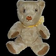 Unusual White Mohair Invicta Teddy Bear 1940's