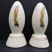Coors Porcelain Pottery Salt & Pepper Shakers