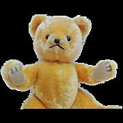 1950s Mohair Teddy Bear By Character