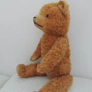 Charming Vintage Mohair Teddy Bear