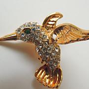 Humming Bird Pin Temblant