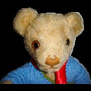 Adorable old Invicta bear