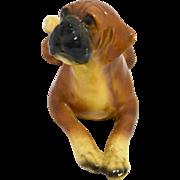 Mortens Studio Reclining Boxer Puppy