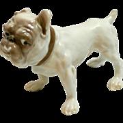 Bulldog Porcelain Figurine Dahl Jensen for Bing & Grondahl 1676 c. 1984