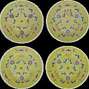 Chinese Famille Jaune Set 4 Large Porcelain Plates Shou, Bats, Floral, Scrolls, Yellow