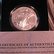 American Eagle 2007