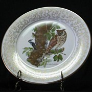 """SOLD Gorham Fine China """"Long-Eared Owl"""" Collector Plate"""