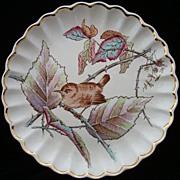 SALE Copeland Transfer Plate ~ Colored Bird 1885