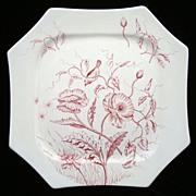 SALE Victorian RED Transferware Plate ~ BLOOM ~ 1884