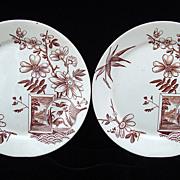 English Victorian Transfer Plates ~ FAN HERONS 1888