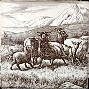 SALE William Wise Farm Goats Tile 1879