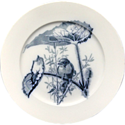 SALE Pierre Mallet Blue Transferware ORNITHOLOGY Plate ~ 1870
