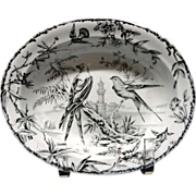 SALE Black Transferware ~ Hawk + Hummingbirds ~ Server ~ Indus 1885