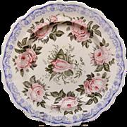Rare 3-Color Transfer Plate ~ Moss Rose ~ c1830