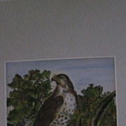 Watercolor Painting of a Hawk on a Tree Limb