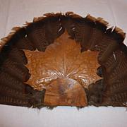 Unusual Wild Turkey Feather Fan Wall Decoration