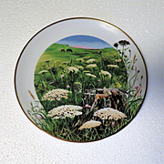 SALE Queen Anne's Lace Wildflowers of the South Limited Edition Collector Plate