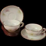 Fein Bayreuth Sophienthal Porcelain Demitasse Teacups