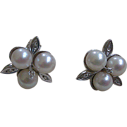 REDUCED PRICE REDUCTION! Vintage Cultured Pearl and Diamond Flower Earrings 14K White Gold