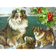 SOLD A Joyful Chirstmas Incised Postcard Collie Dogs And Holly Silver Foil Border