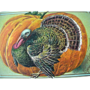 Thanksgiving Incised Greeting Postcard Large Turkey Large Pupmkin