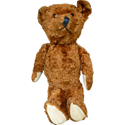 "1920's 14"" Knickerbocker Teddy Bear"