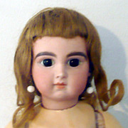 Fine Kestner Tosca Hair Wig with Plaster Pate for XI or AT