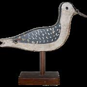 NJ Yellow Leg 1910 Shore Bird Samuel Hand 1910 OP