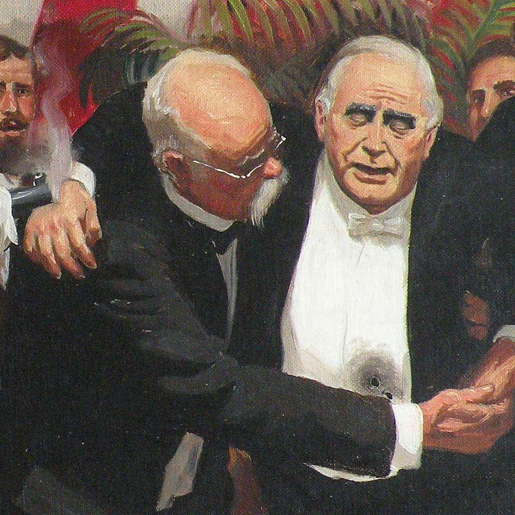 Image result for president william mckinley assassination