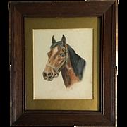 Original English Watercolor of Horse Head, Signed W.T.B.  C.1900