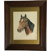 Original English Watercolor of Horse Head, Signed W.T.B.  C.1900