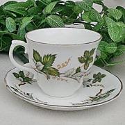 Arklow Fine Bone China Footed Tea C & S Set Grape Leaf Pattern ARK22