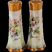 Vintage Bavaria or Limoges Artist Signed Salt and Pepper Shakers Hand Painted Wild Pink Roses