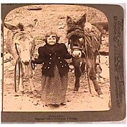 Stereo View of Little Girl with Donkeys - Underwood & Underwood